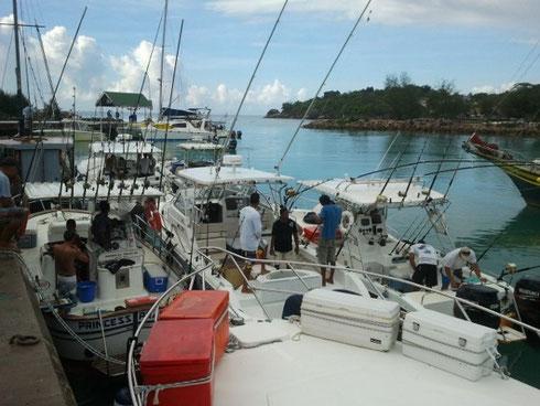 Seychellen angeln La Digue Boote vor Turnier Okt. 2013