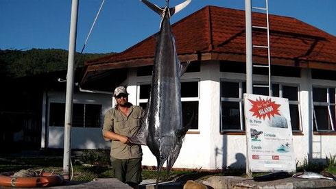 Seychelles fishing Marlin at gantry