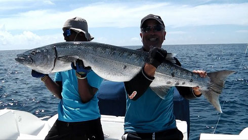 Seychelles fishing popping Barracuda