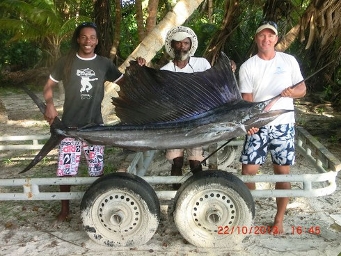 Seychellen angeln Segelfisch Präsentation Okt. 2013