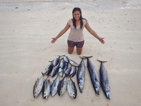 Seychellen angeln Trollingfang Praslin Jan. 2014