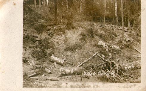Gefallene russische Soldaten nach Eroberung einer Stellung an der Düna im heutigen Lettland. (Schlacht um Riga 01.09.1917)