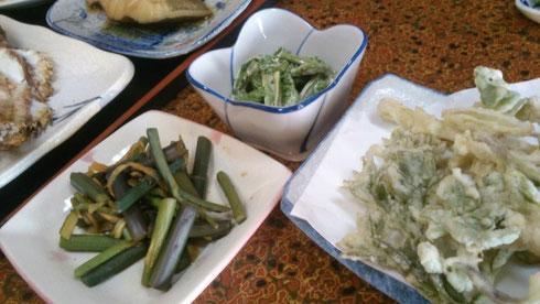 柏崎の旬の味覚 山菜