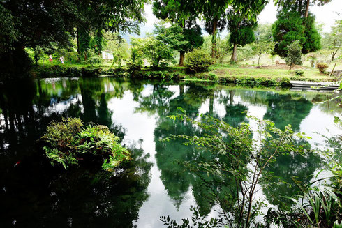 明神池の湧き水だよ。安産にいいお水なんだって