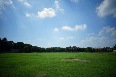 ほら、緑と空だけの空間が広がっているでしょう