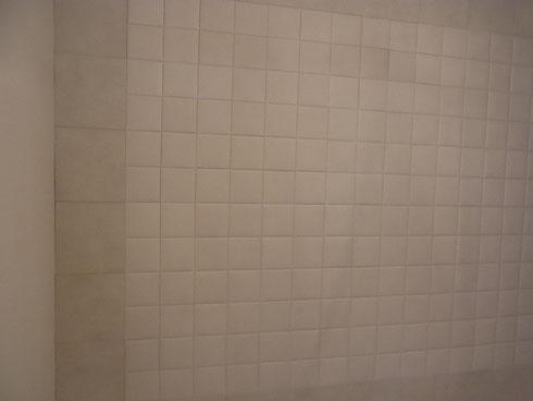 エコカラット 主寝室の壁面