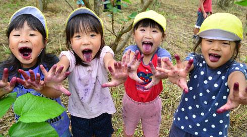 綾東幼児園のこどもたち マルベリー色に染まった手や口をうれしそうに見せてくれました
