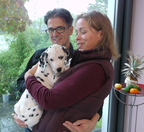 Sunnyboy Lila wird nun dort verwöhnt, wo auch wir unseren ersten Dalmatiner großgezogen haben: in Hilden
