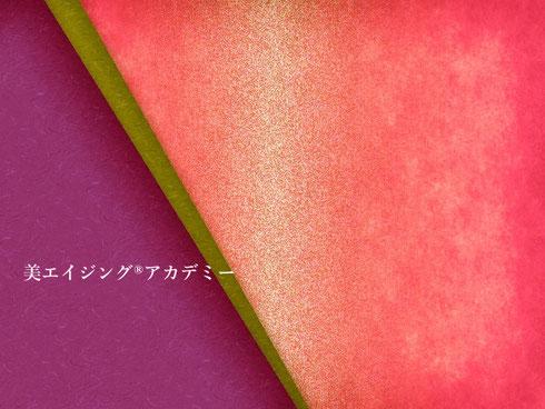 和の伝統色・日本の伝統色・講師・美エイジング協会
