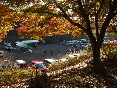 二年に一度、秋に主催する単犬種展