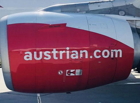 Aktuell fliegen Lufthansa, EuroWings und SwissAir  © Foto Peter Schmidt 052019
