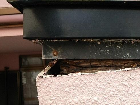 玄関 庇 雨漏り修理