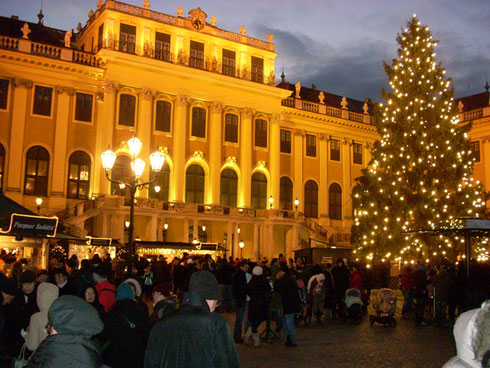 2010 In Vienna, There are Many Markets; Do the One At Schoenbrunn Palace at Night