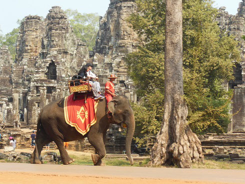 An Elephant strides past the Ancient Ruins of the Bayon Temple in Angkor Thom