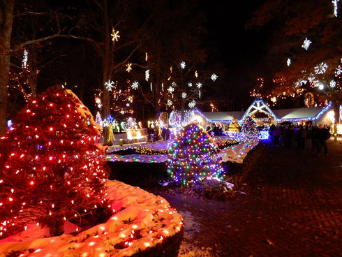 Lights of Every Color Celebrate the Christmas Season at LaSalette