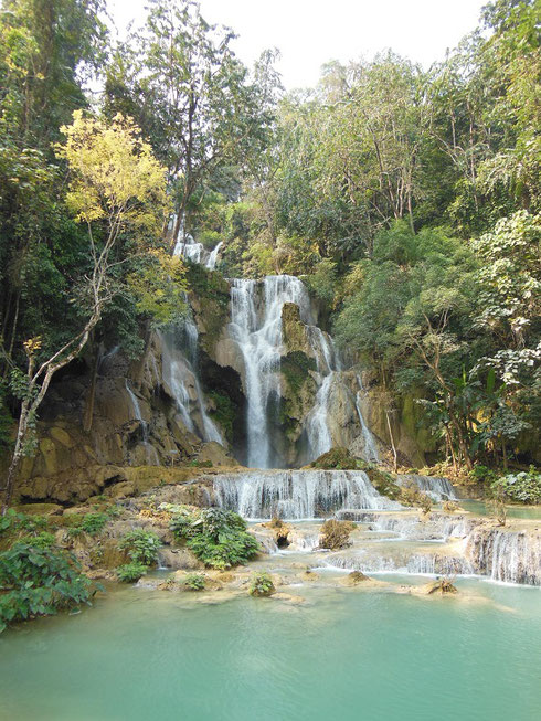 2015 The Stunning Tat Kuang Si Waterfalls are within an hour's drive from Luang Prabang