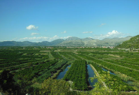 This Beautiful Valley Surrounded by Mountains is the Bread Basket of Croatia