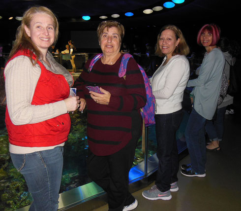 Travelers Await the Turtle Feeding at the New England Aquarium Giant Tank
