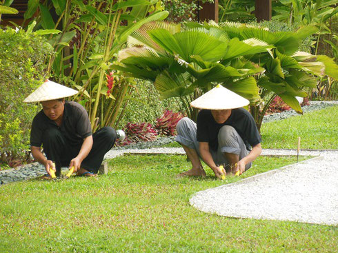 2015 Gardeners at our hotel clipping the lawns by hand during our stay there