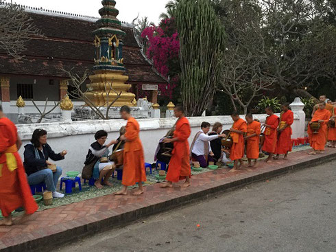 2015 Buddhist monks collect alms from our group at a 6:00 am ceremony