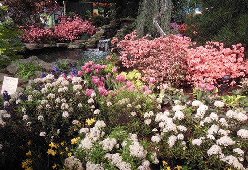 A Stunning Floral Display around a Vernal Pool at the 2017 Boston Flower Show