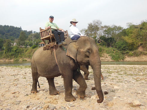 2015 Rescued from the Timber industry, our gentle Elephant was named Hamong