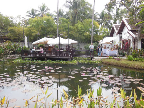 2015 Our Breakfast Pavilion at the Sanctuary was outdoors by the Lotus Pond