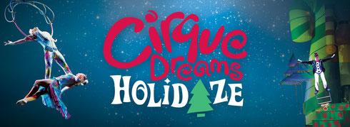 Branding Logo for Cirque Dreams Holidaze