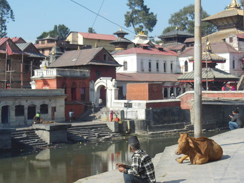 2013 The Ghats of Bhatapur's Pashupatinath Temple Complex on the Baghmati River