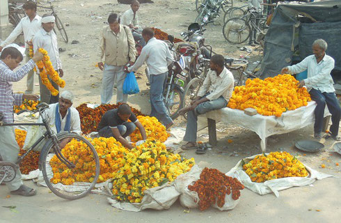 2013 Vendors in Agra with Marigold garlands for Sale during the Festival of Diwali
