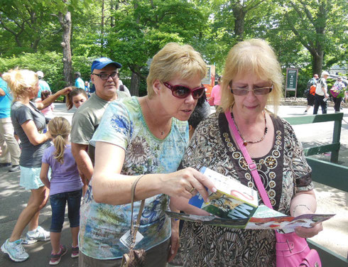 How Many Adventure Tours Travelers Does it Take to Read a Bronx Zoo Map?
