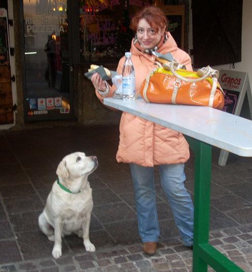 2008 Everybody Celebrates - Even this Dog Waiting for a Bite of Schweinwurst