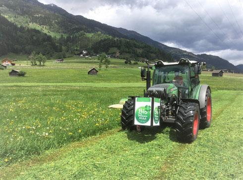 """""""HEU-OPENING 2020"""" ... und weiterhin optimale Voraussetzungen für die weltbeste Rohmilch (wissenschaftlich erwiesen, lt. Zeitungsbericht)"""