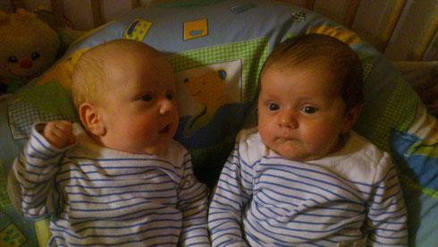 ... über den Neuschnee Ende Oktober 2012 freuten sich auch die Zwillinge Elias und Julian aus Tresdorf 100 ...