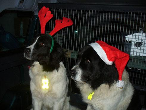 Ida und Lina Weihnachten 2010