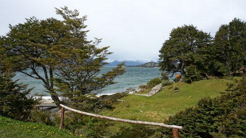 Da der Trek auf der Isla Navarino nicht klappt, machen wir eine dreitägige Wanderung im Nationalpark Tierra del Fuego. Eine längere Strecke gibt der Park leider nicht her...