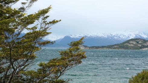 Wie fast immer in Patagonien weht ein starker Wind