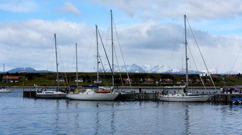der Hafen von Ushuaia, ob die alle um Kap Horn segeln?