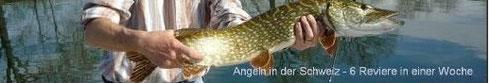 angeln schweiz