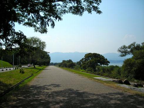 琵琶湖烏丸半島 水生植物園側