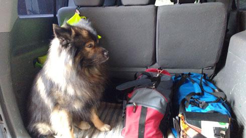 Leider darf ich nicht mit, keine Hunde beim Thermenausflug geduldet... aber probieren wird ja wohl erlaubt sein!