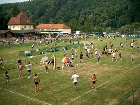 Wertheim 2003