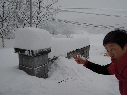 玄関前の石柱上に昨夕から積もった雪。ここにどれだけ積もったか、、、で、いつも新雪の量を分かる様にしているんです☆