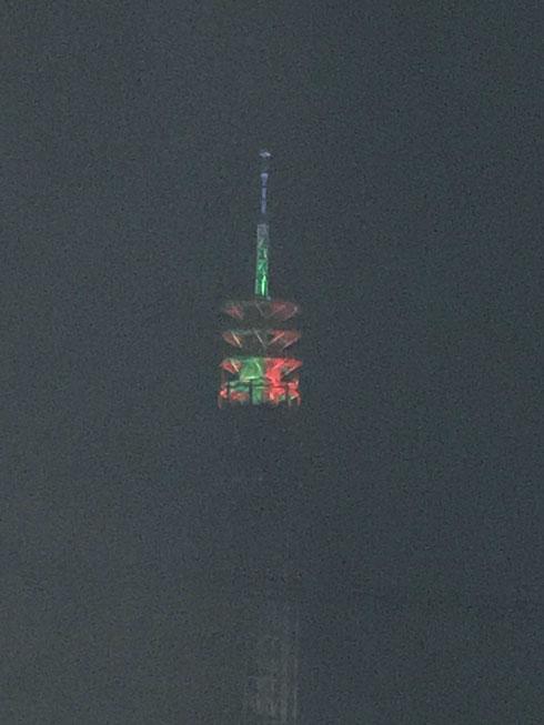 いちおう、クリスマスバージョンです、田無タワー。