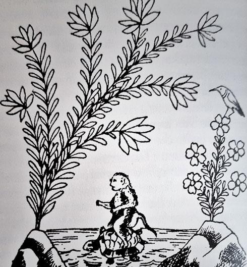 La tartaruga porta a casa la scimmia - dal libro Calila e Dimna di Kader Abdolah, edizione Iperborea