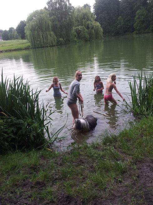 Die Trick Kids sollten eigentlich ihren Hunden das schwimmen beibringen