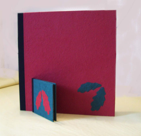 Cajas presentacion, caja regalo, caja embalaje, elegante, original, moderna, artesanía.
