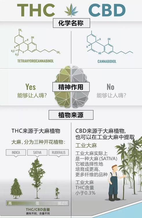 CBD THC工业大麻 治疗癌症 德国欧亚商旅