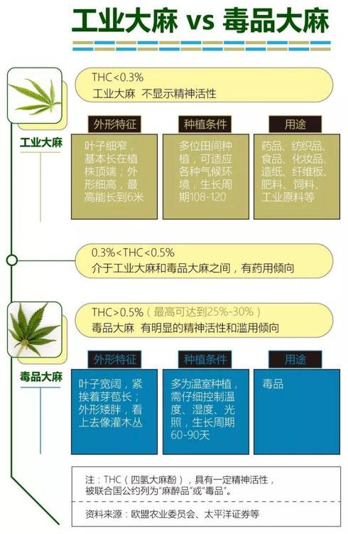 CBD THC 区别 大麻治疗癌症 德国欧亚商旅 Orasien
