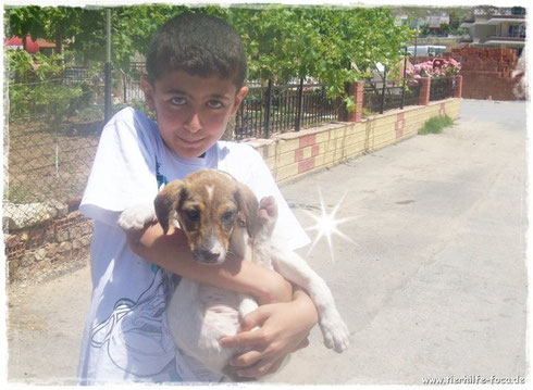 Nilgün braucht unser aller Hilfe, um all diesen ungeliebten Wesen helfen zu können!!